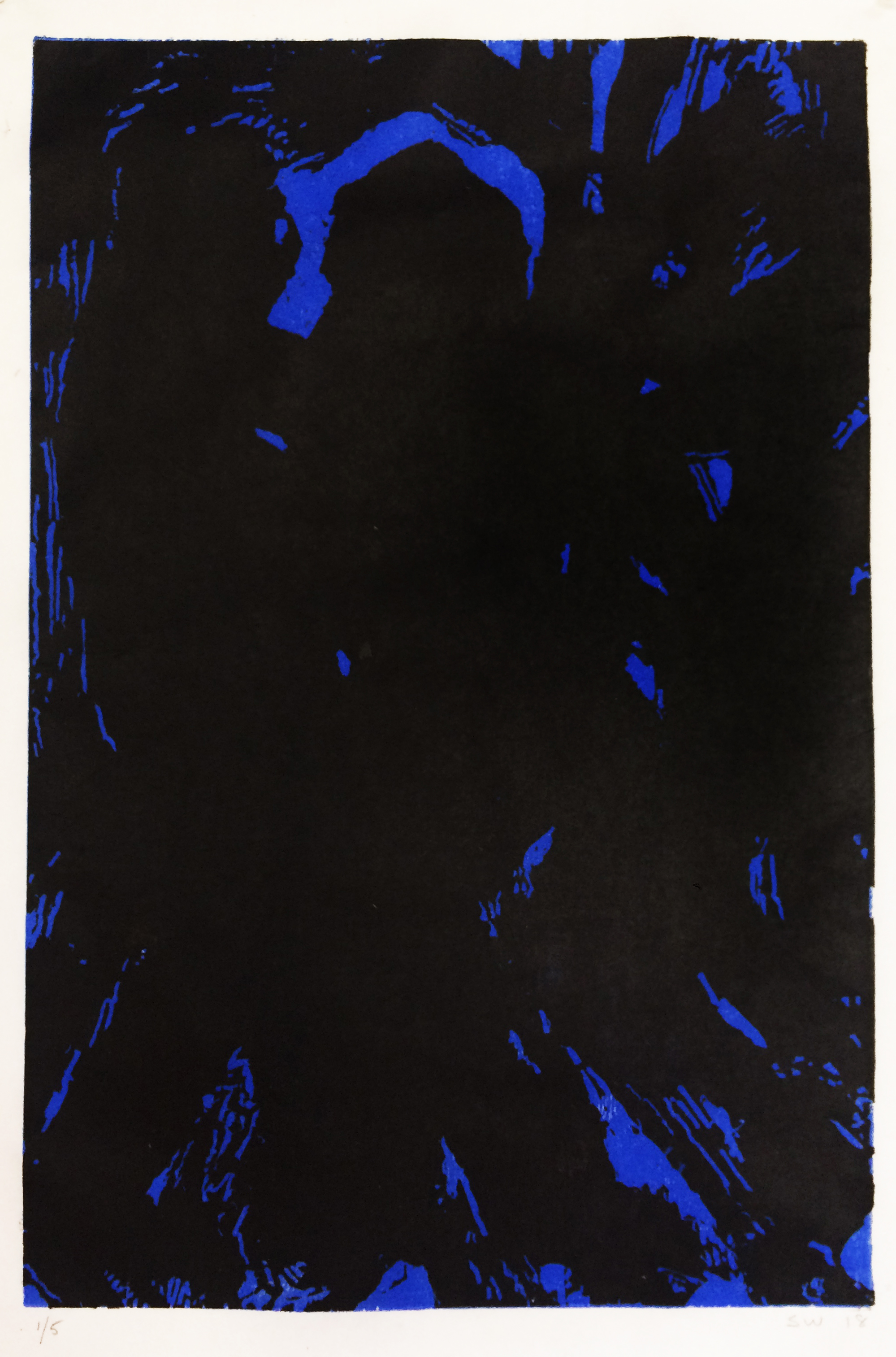 Dark Forest (Blue)